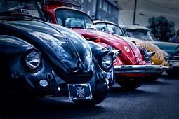 VW Beetle Wallpaper HD  WallpaperSafari Vw Beetles