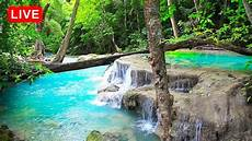 waterfall jungle sounds beautiful nature sounds relaxing sleep meditation healing study