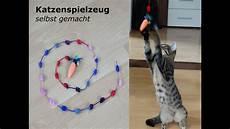 Diy Katzen Spielzeug Selbst Gemacht Follow Salt Pepper