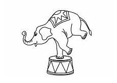 Ausmalbilder Ella Elefant Elefant In Der Manege Ausmalbilder Kinder Malvorlagen
