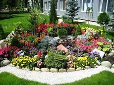 kleinen steingarten anlegen цветы для альпийской горки