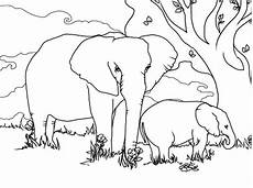 elephant coloring pages coloring sky