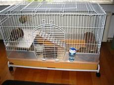 gabbia per porcellino d india gabbia per porcellini d india e conigli nani e piccoli