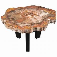Petrified Wood Coffee Table Belgium Circa 1970s For Sale