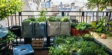jardin potager sur terrasse balcon terrasse jardin comment faire un potager femme