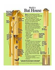 bat house plans florida free bat house plans over 22 bat house plans on this