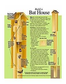 bat house plans florida free bat house plans over 22 bat house plans on this