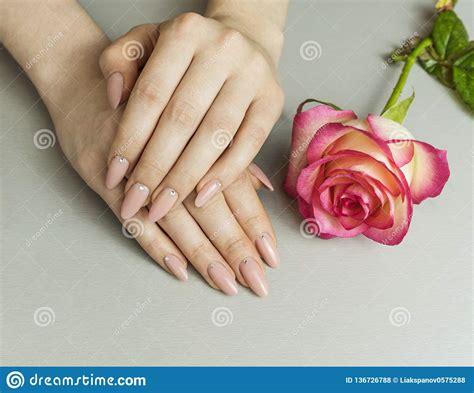 Rosa Handen