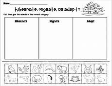 animal migration esl worksheets 14297 hibernation migration and adaptation unit by penley s pointe tpt