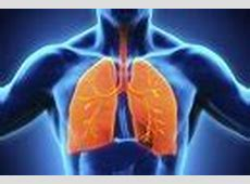 rales lung sounds