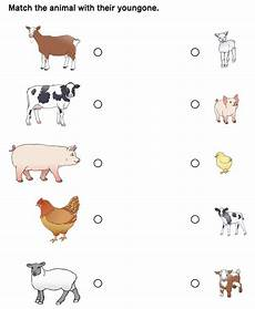 5 best baby animals matching printables printablee com