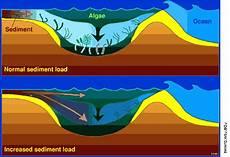 Geo Sedimentasi