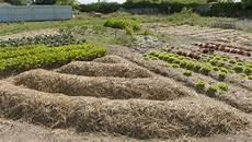 faire une butte permaculture comment cr 233 er une butte de permaculture diy echobio