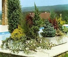 le beau jardin des astuces pour bien conserver et soigner