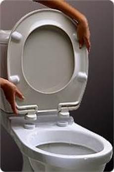 abattant wc haut de gamme zen