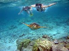 snorkeling travel guide at wikivoyage