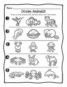 animal habitats worksheets grade 2 13887 animal habitats science activity and worksheets the