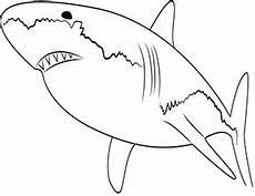 ausmalbild weisser hai zum ausdrucken