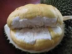 Inilah Jenis Jenis Dan Gambar Durian Yang Paling Populer