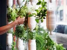 wand und beet wohnzimmer dekorieren window farming wand beet diy gem 252 se anpflanzen garten und garten