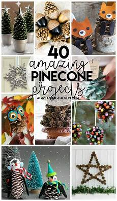 40 Awesome Pinecone Crafts And Projects Pinecone Crafts