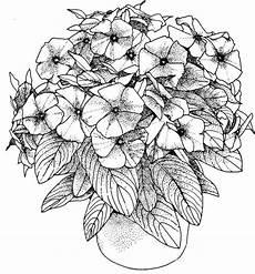 Ausmalbilder Erwachsene Blumen Kostenlos Stress Abbauen 20 Bilder Zum Ausmalen Kostenlos F 252 R