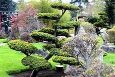 le jardin japonais au jardin d acclimatation de