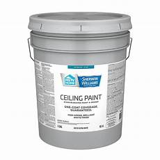 hgtv home by sherwin williams ceiling flat white latex paint actual net contents 128 fl oz at hgtv home by sherwin williams ceiling flat white latex