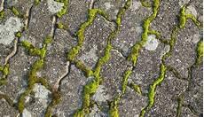 eliminer la mousse sur une terrasse gardens nettoyer terrasse nettoyage terrasse et produit
