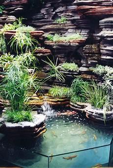 bassin koi interieur indoor vertical garden indoor garden indoor water