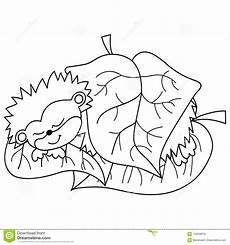 vektor nettes karikatur igel schlafen vektor abbildung