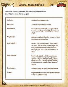 classify and categorize worksheets 5th grade 7970 animal classification science worksheet for 5th grade