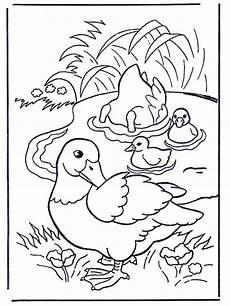 Lustige Enten Ausmalbilder 34 Enten Bilder Zum Ausmalen Besten Bilder Ausmalbilder