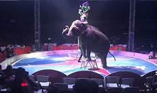 Malvorlagen Elefant Neuwied Malvorlagen Elefant Neuwied