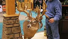 by what mechanism do deer re grow antlers with an extra