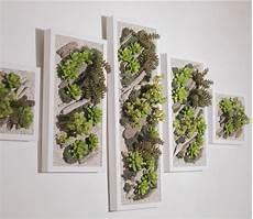 Mur Vegetal De Plante Grasse Recherche Mur