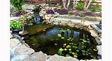 construire un bassin à poisson bassin poisson