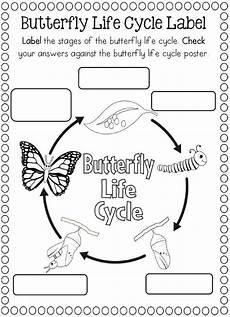 life cycle butterfly worksheet for kids 2 life cycles teaching science kindergarten science