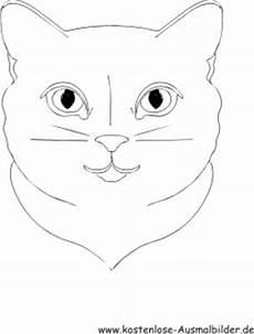 Katzengesicht Malvorlage Ausmalbilder Ausmalen Malvorlagen