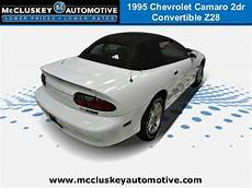 Mccluskey Chevrolet Colerain by Used 1995 Chevrolet Camaro Convertible Used Cars In