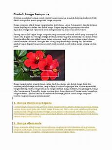 Gambar Organ Bunga Dan Fungsinya Pickini