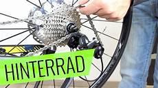 fahrrad hinterrad ausbauen scheibenbremse fehler