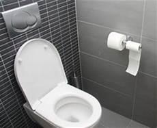 exemple modele toilette wc