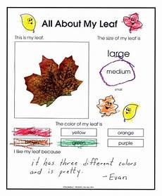 science worksheets leaves 12281 preschool october november 2014 that s my leaf the mailbox fall kindergarten fall preschool