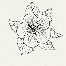 Malvorlagen Hawaii Blumen Hawaii Hibiskusbl 252 Te Blatt F 252 R Buch Malvorlagen F 252 R