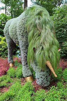 Living Sculptures At Atlanta Botanical Gardens