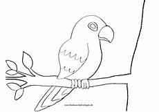 Malvorlage Vogel Auf Ast Jaguar Auf Ast In Baum Mit Papagei Nadines Ausmalbilder
