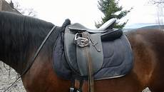 Malvorlage Pferd Mit Sattel Erl 228 Uterung Anhand Bildern F 252 R Den Hidalgo Sattel