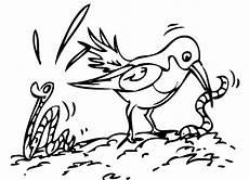 kostenlose malvorlage v 246 gel vogel frisst w 252 rmer zum ausmalen