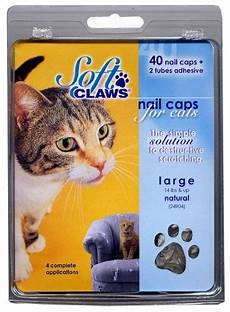 100 Pcs Cat Claw Covers Cat Claw Covers A Humane Option To Declawing Cat Claw